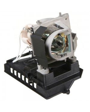 NEC NP20LP Replacement Projector Lamp with Housing